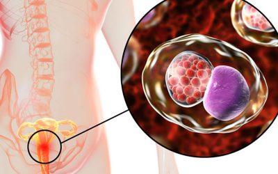 Triệu chứng của bệnh lậu giai đoạn đầu – 7 Dấu hiệu thường gặp