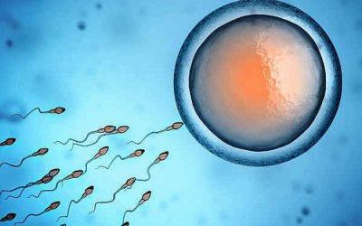 Quan hệ chưa xuất tinh có thai không – Bác sĩ chuyên khoa trả lời