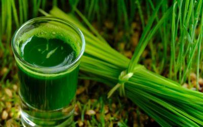 10 tác dụng tuyệt vời khi uống nước lá hẹ tươi